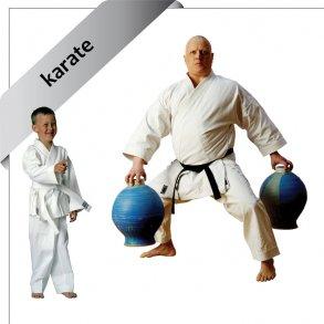 gier til karate