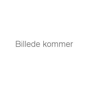 BÆLTEBRODERING - 2-FARVET